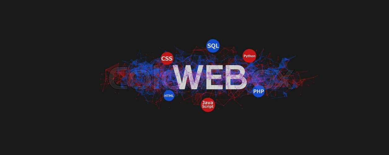 Front End Role Web Design in Lahore