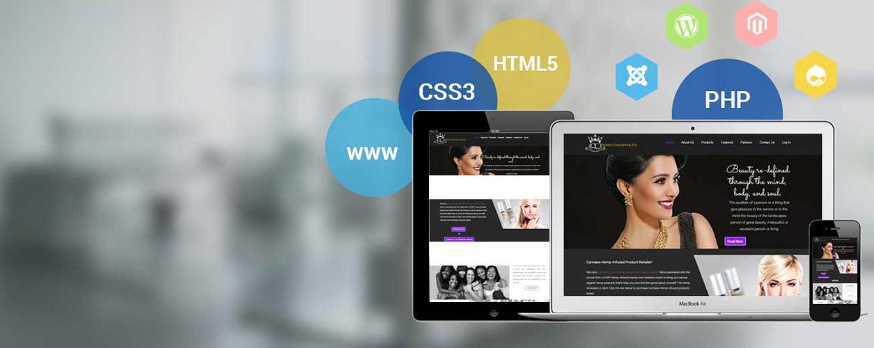professionals Website Developer In Lahore Company